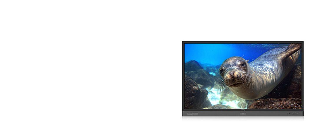 jual interactive flat panel benq rp860k